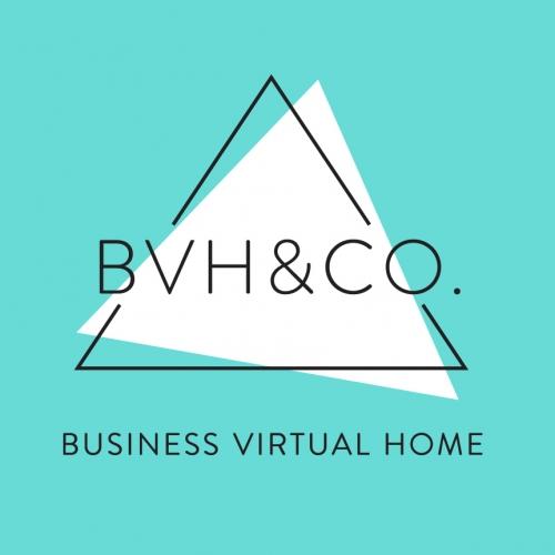 BVHCO-logo-aqua